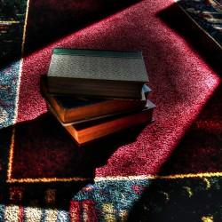 Tim Mountain Books on Carpet2