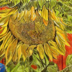 Lois Adler Roussell - Passing Sunflower_1500